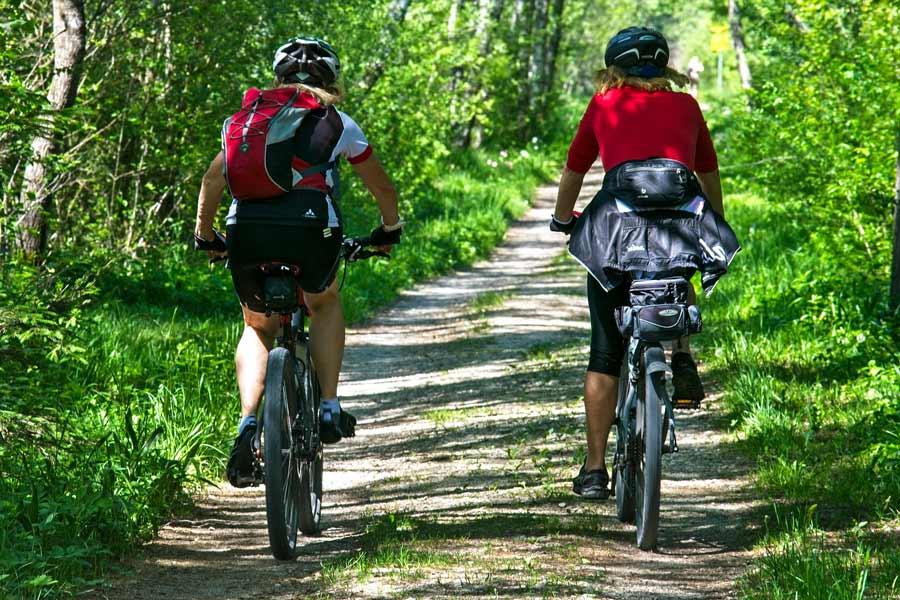 Cyklostezka Labe Elberadweg
